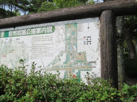 八束自然牧場公園5