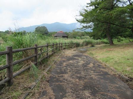 八束自然牧場公園8