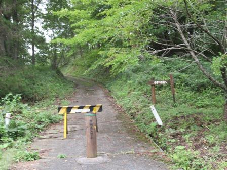 霞ヶ丘公園 (7)