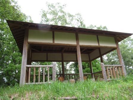 霞ヶ丘公園 (12)
