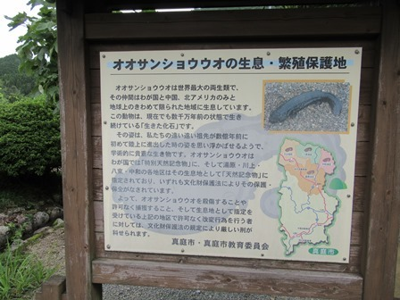 はんざき山車2 (1)