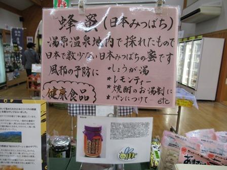 ひまわり館10
