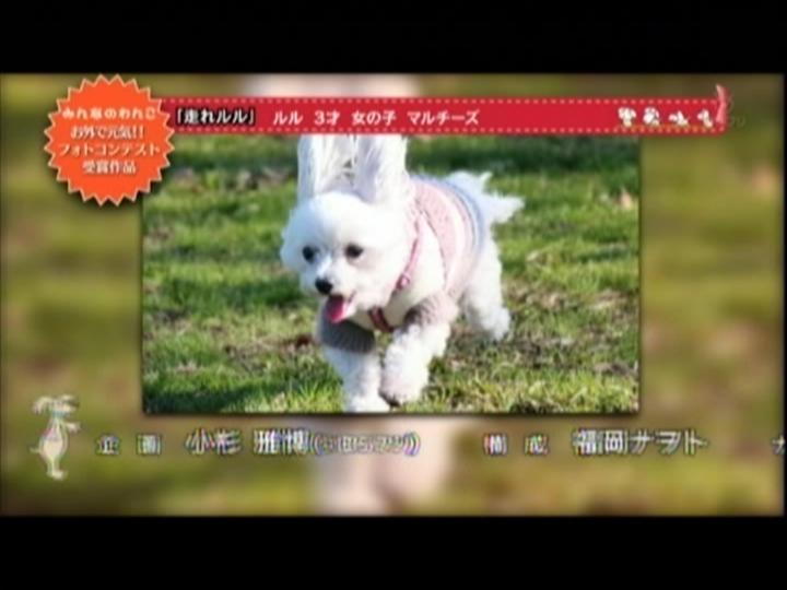 Snapshot(1) (720x540)