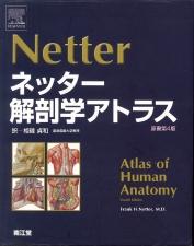 ネッター解剖学2