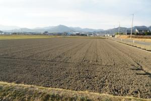 耕した田んぼ1