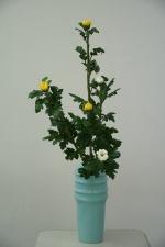 瓶花直立型2