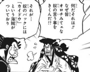 黒炭オロチのバックには「カイドウ」という海賊がついている