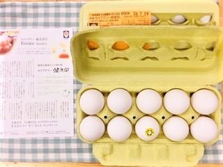 20200716セイアグリー健康卵