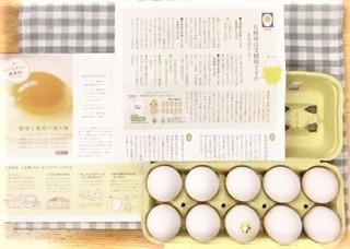20200916セイアグリー健康卵