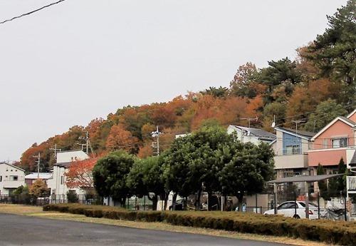 191210urayama_kouyou