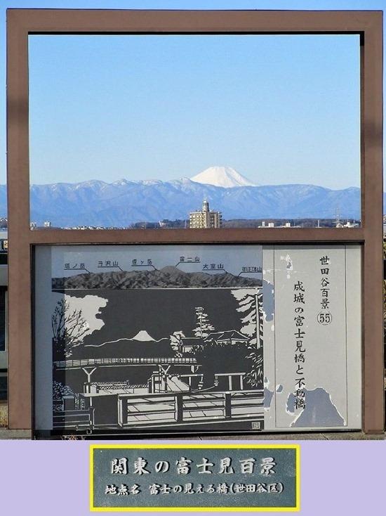 200209mt.fuji_fujimibasi