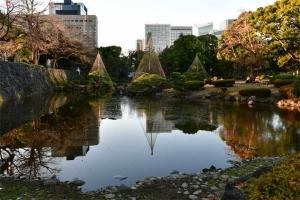 Park Scene Tokyo
