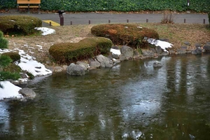 Snow Patches and Frozen Water