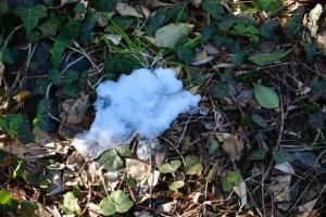 Last Patch of Snow