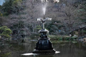Freezed Fountain