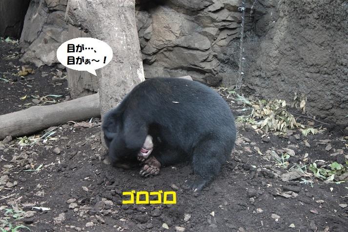 232 - コピー