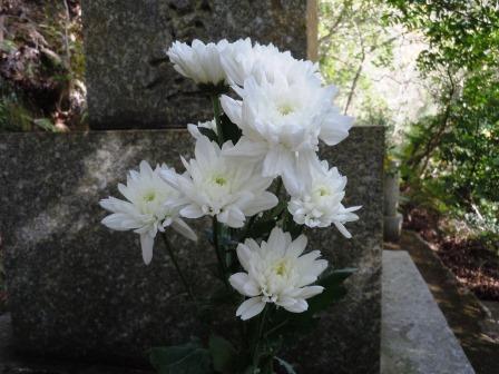 墓15(2019-12-28)
