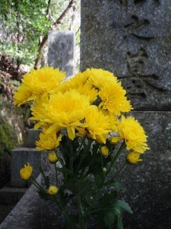 墓16(2019-12-28) (花)