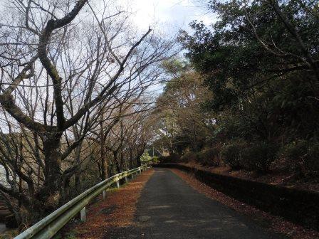 ⑦相撲場1(2020-01-02)登り口