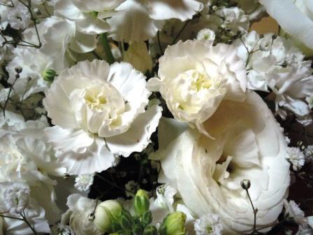 白い生花1( 2020-01-24)