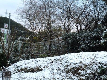 雪景色6(2020-02-18)