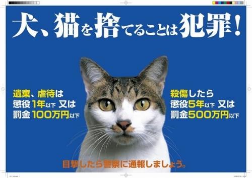 動物愛護管理法新罰則ポスター