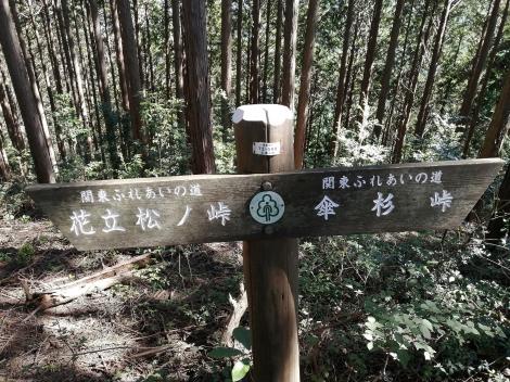 傘杉峠から関八州1