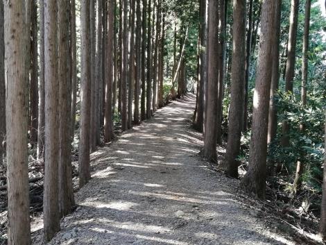 傘杉峠から関八州8