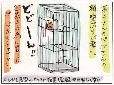 茶子ちゃんへの愛1 1-2