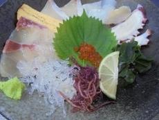 ブログ10海鮮丼