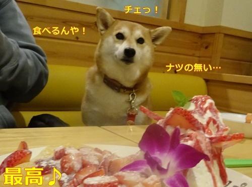 3食べるんや