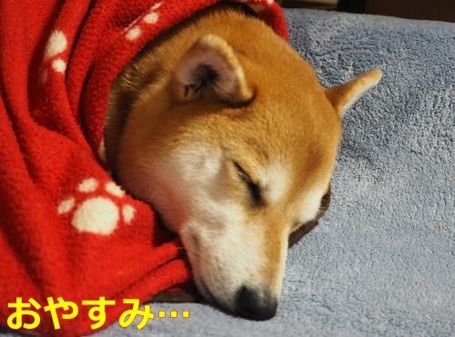 2おやすみ