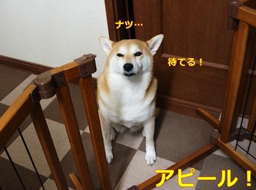 2イイ子アピール