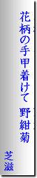 nokongiku200916-haiku.jpg