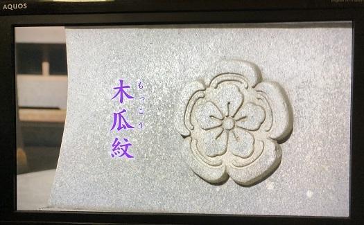 大河08IMG_1191