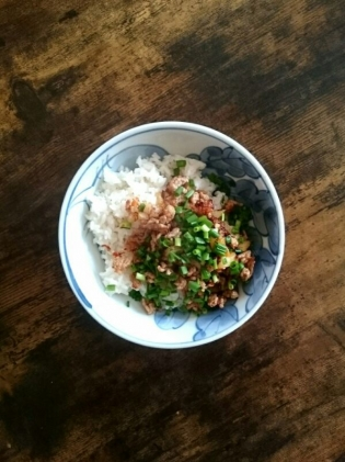 20200102豚挽き肉ラー油炒め小葱散らし丼と天ぷら
