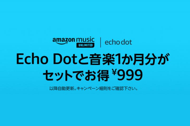 echo_doto_3rd_999_000.png