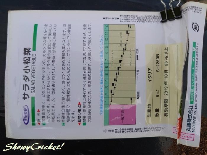 2019-10-01小松菜 (6)