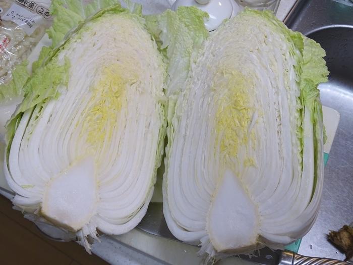 2020-01-25白菜