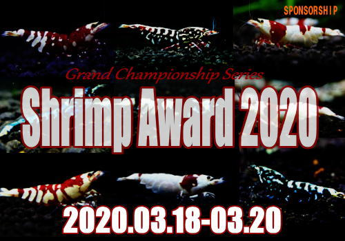 shrimpaward202003ver02.jpg
