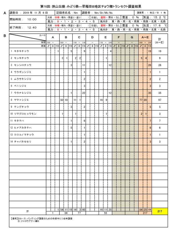 191106●第16回狭山丘陵みどり森―早稲田B地区チョウ類トランセクト調査