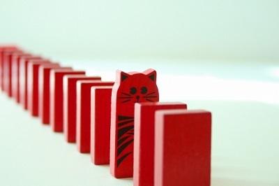 順番待ち 猫
