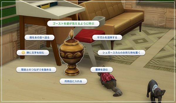 TinyLiving_Hijikata1-19.jpg