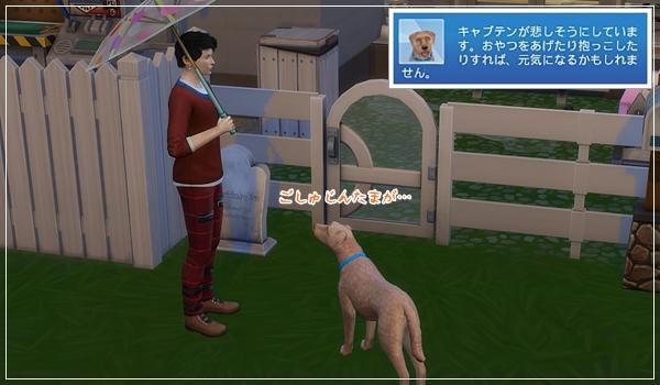 TinyLiving_Hijikata1-37.jpg