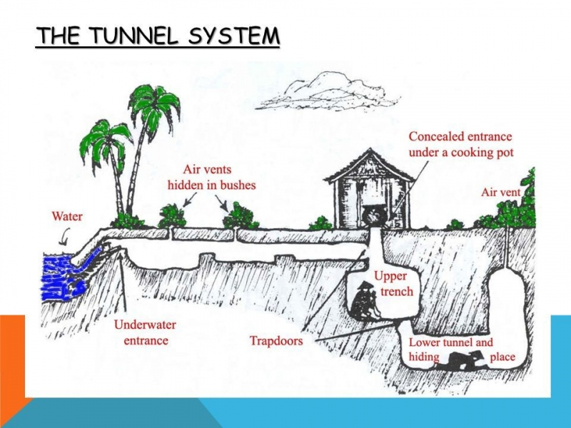 The_tunnel_system.jpg