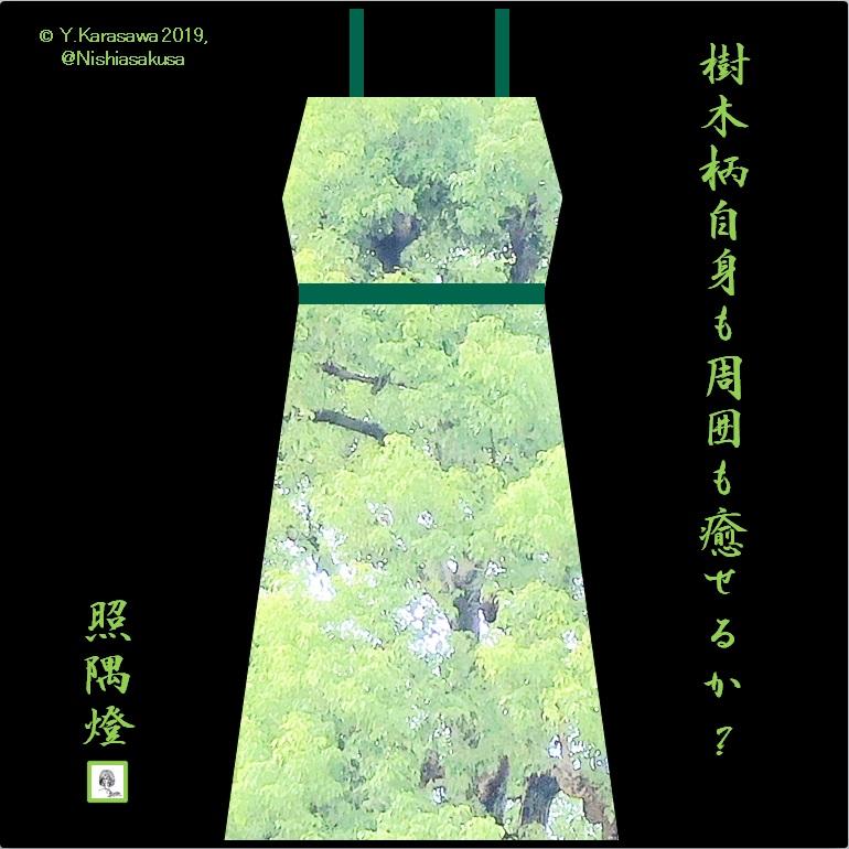 191013樹木柄ワンピLRG