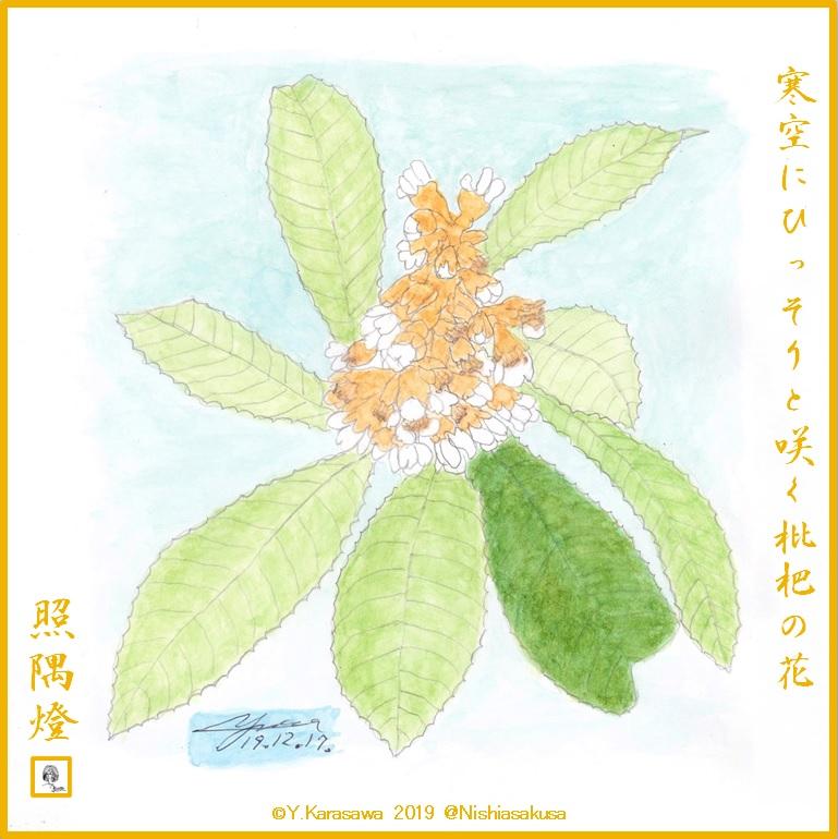 191217枇杷の花LRG