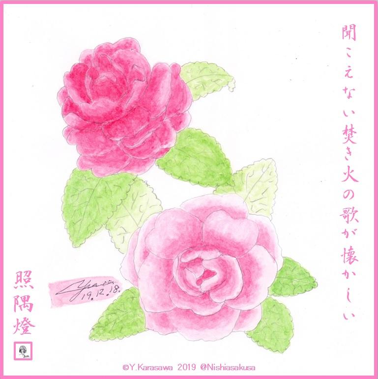 191218八重山茶花ピンクLRG