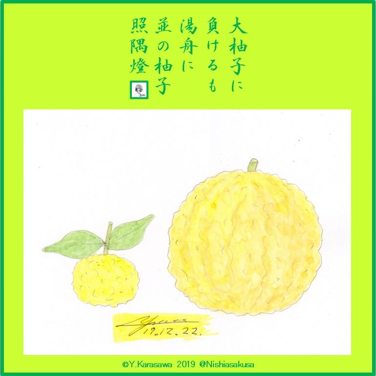 191222柚子と大柚子LRG