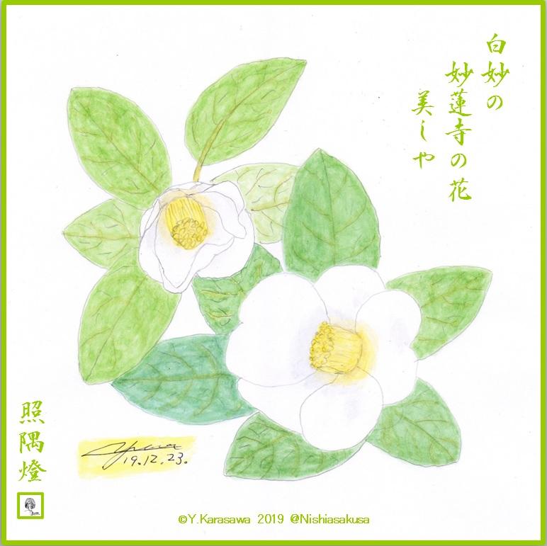 191223白妙蓮寺LRG